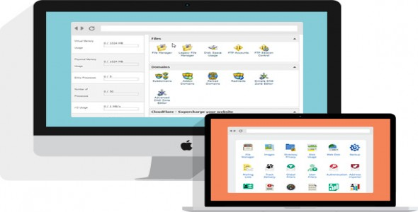 Why Cpanel Based WebHosting Is Best Then Others Panel